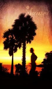 darwin-sunset